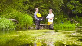 Woman ecologist taking samples of water. Man and woman scientist environmentalist standing in a river. Woman taking sample of duckweed and putting it into the stock video