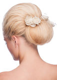 Woman with elegant hairstyle Royalty Free Stock Image