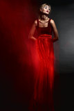 Woman in elegant  red dress Stock Photos