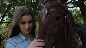 Woman embrace brown horse stock footage