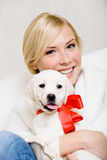 Woman embracing puppy of labrador with red ribbon Stock Image