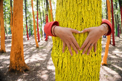 Woman embrassing a colourful tree with shape of heart from hand, Royalty Free Stock Image