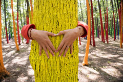 Woman embrassing a colourful tree with shape of heart from hand, Stock Photo