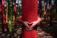 Woman embrassing a colourful tree with shape of heart from hand, Royalty Free Stock Images