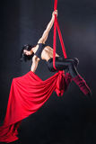 The woman is engaged in aerial acrobatics. Stock Image