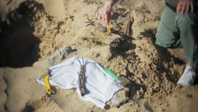 The woman is engaged in excavating bones in the sand, Skeleton and archaeological tools. 4k stock footage