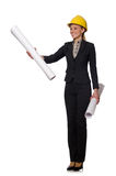 Woman engineer with draft papers Stock Images