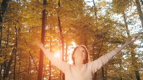 Woman enjoying beautiful autumn forest at sunset royalty free stock photos
