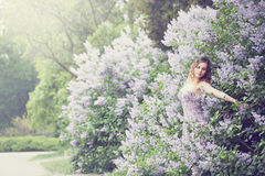 Woman enjoying blooming lilac, tinted. Beautiful woman in a spring garden with blooming lilacs, woman hugging lilac bush Royalty Free Stock Image