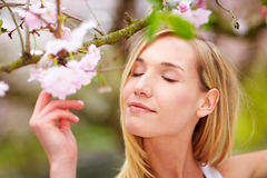 Woman enjoying cherry blossoms Stock Photography