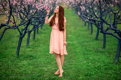 Woman enjoying spring in the green field with blooming trees Royalty Free Stock Photos