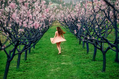 Woman enjoying spring in the green field with blooming trees. Young woman enjoying spring in the green field with blooming trees Royalty Free Stock Photo