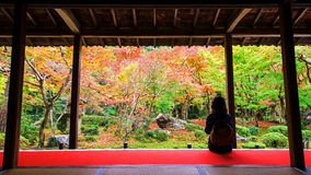 woman in Enkoji temple enjoys Autumn garden Royalty Free Stock Images