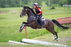Woman eventer on horse is jump the open ditch Royalty Free Stock Photos