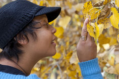 Woman examining autumn leaves Stock Photo