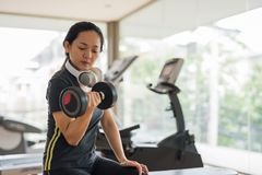 Woman exercise dumbbell in sport gym. Fitness Asian woman exercise with dumbbell at gym with copy space for text. Healthy girl has intensive training and hold Stock Photos