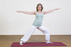 Woman exercises yoga Royalty Free Stock Images
