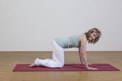 Woman exercises yoga Royalty Free Stock Image