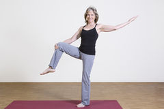 Woman exercises yoga Royalty Free Stock Photos