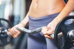 Woman exercising with barbell. Stock Photos