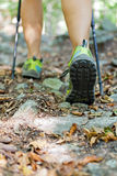 Woman exercising in forest Royalty Free Stock Photo