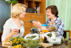 Woman explaining to her neighbor about the tea royalty free stock photo