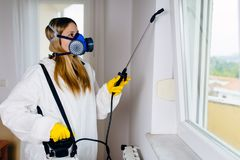 Woman exterminator working royalty free stock photography