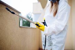 Woman exterminator working stock photos