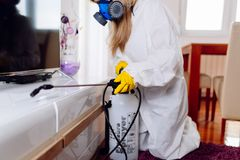 Woman exterminator working stock photography