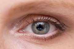 Woman eye. Open woman eye with makeup, macro shoot Stock Photography