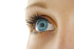 Woman eye. Royalty Free Stock Photo