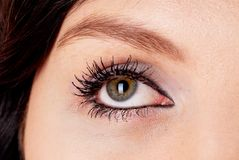 Woman eye Royalty Free Stock Photos