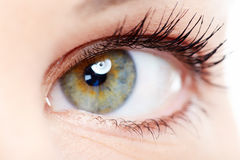 Woman eye. Royalty Free Stock Photography