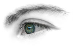 Woman eye. Over white background Royalty Free Stock Image