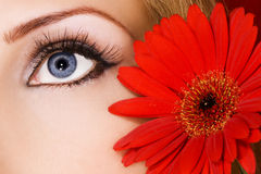 Woman eye Royalty Free Stock Photo
