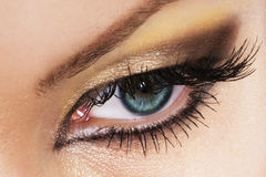 Free Woman Eye Royalty Free Stock Photo - 6823515