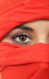 Woman eye Stock Image