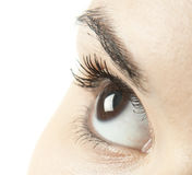 Woman eye Royalty Free Stock Images