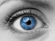 Woman eye. Beautiful blue woman single eye close up, black and white royalty free stock photos
