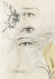 Woman eye and butterfly with plants, Drawing on vintage paper. Royalty Free Stock Photos
