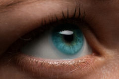 Woman eye with contact lens applying, macro. Blue dilated pupil, Stock Image
