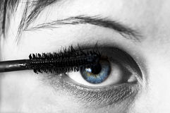 Woman eye with eyebrush. Stock Photo