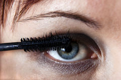 Woman eye with eyebrush. Stock Photography