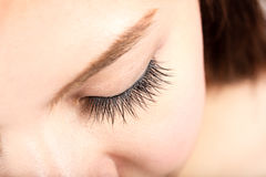 Woman eye with long eyelashes Stock Photography