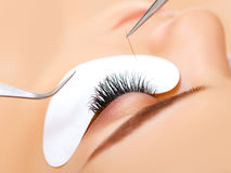 Woman Eye with Long Eyelashes. Eyelash Extension Royalty Free Stock Photography