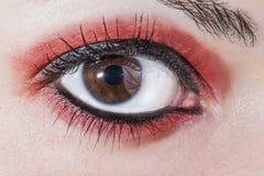 Woman eye Stock Images
