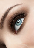 Woman eye with make-up Stock Photos