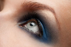Woman eye with make-up Royalty Free Stock Image