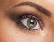 Woman eye with makeup Royalty Free Stock Images