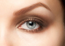 Woman eye with makeup Royalty Free Stock Image